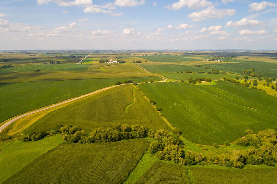 Nevada IA - View of Green Farmland in Nevada Iowa
